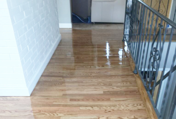 Wood Floor Refinished