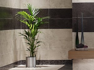 Domestic bathroom
