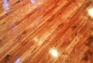 Wood Floor Stained