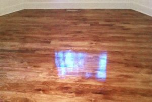Wood Floor Staining