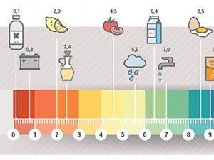 pH-Levels-foods