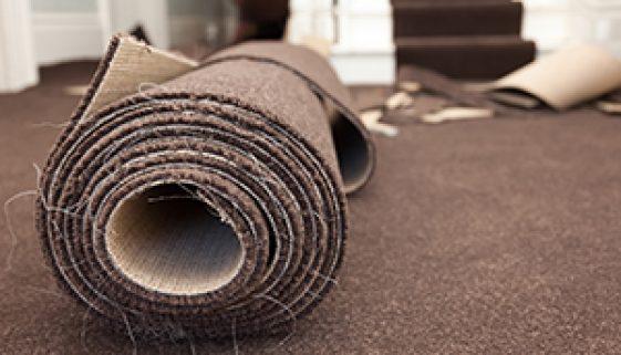 Carpet Cleaners Denver CO
